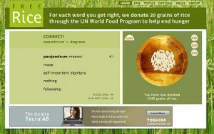 Example of the Free Rice game from Flickr user bavatuesdays