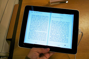 iPad Display Item