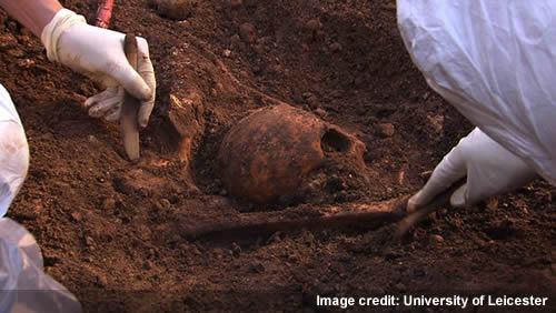 Richard III skull in situ. credit: University of Leicester